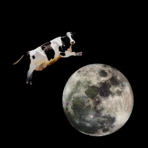 It is not impossible for a cow to jump over the moon but it is impractical!
